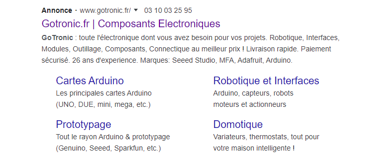 Annonce Google Ads Gotronic