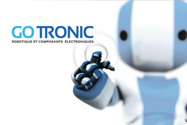 Robot Gotronic